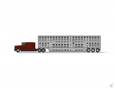 Freightliner FLD 120_Low Roof Sleeper_Livestock Trailer..png